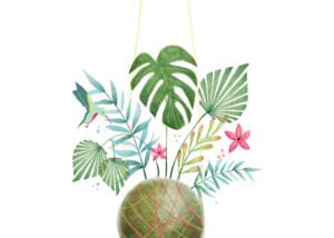 Ilustración de Kokedama
